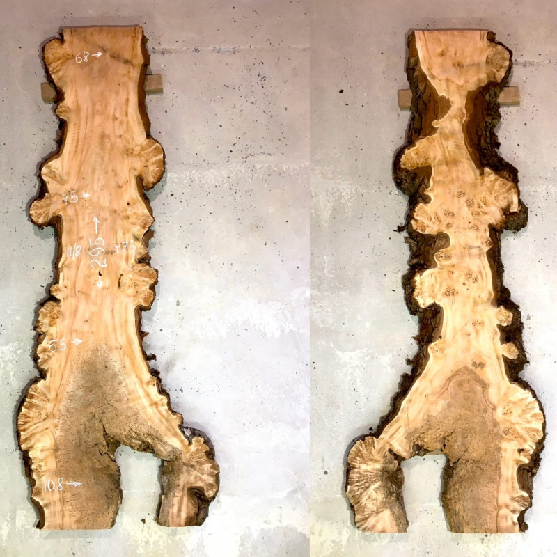 слэб дерева
